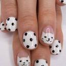 Black And White Polka Dot Kitten!