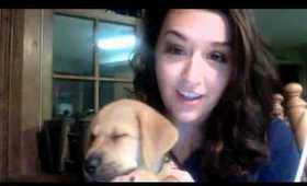 My new Puppy Gill! Thanks SayAnythingBr00ke for such an amazing donation!