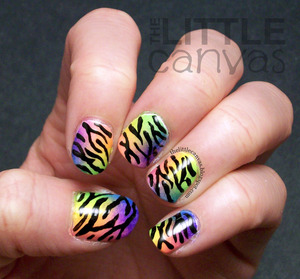 Inspired by a post by Heather from Peace, Love, and Polish! Loving these http://thelittlecanvas.blogspot.com/2013/03/neon-gradient-zebra.html