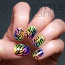 Neon Gradient with Zebra Prints!