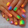 Rainbow Festival