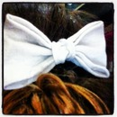 bows!🎀