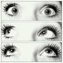 My eyelashes