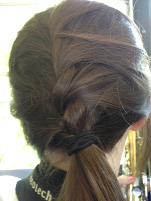 Cute braid made by Anna C!