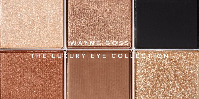 Shop Wayne Goss Luxury Eye Collection Imperial Topaz on Beautylish.com