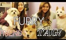 ♥ FURRY FRIENDS TAG  ♥ | ANGELLiEBEAUTY