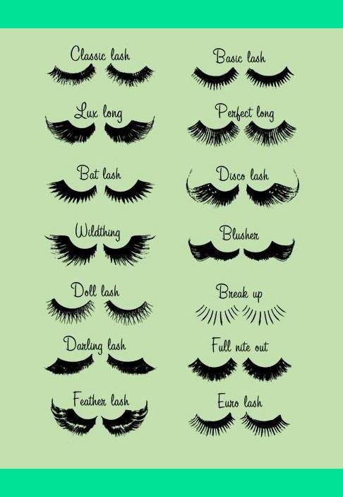 Eye Lash Dictionary Baylie Hs Photo Beautylish