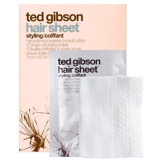 Ted Gibson Hair Sheet - Hair Styling Sheets