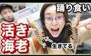【ハプニング】ふるさと納税で頼んだ活き車海老を食べていく!!