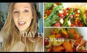 21 Days Raw: Day 13 | What I Eat (Eating Raw Vegan Around Family)