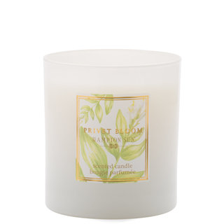 Hampton Sun Privet Bloom Candle