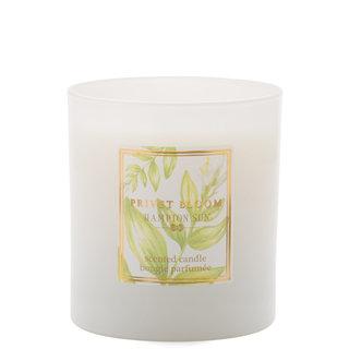 Privet Bloom Candle