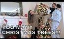 Too Many Christmas Trees!!! - Vlog 44 - TrinaDuhra