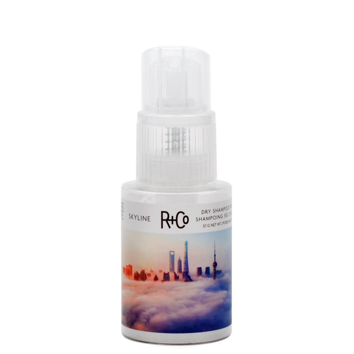 R+Co Skyline Dry Shampoo Powder product swatch.