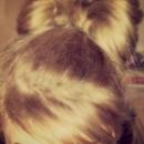 Hair Bow :)