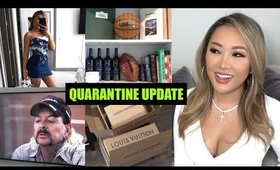 Hi from Quarantine. What I've been up to | hollyannaeree