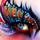 Cute butterfly eye makeup