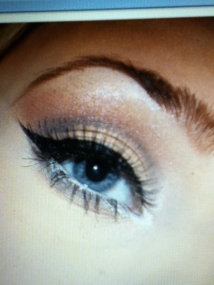 Winged look with browns and shimmer.