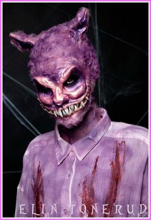 my Halloween costume 2012. Cheshire cat in Zombieland