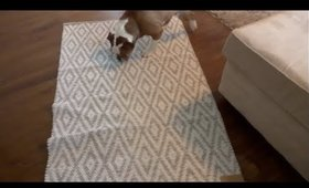 Vlog 12.27.17 Homegoods Mac and More!