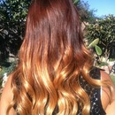 Ombre By Me (Daisy)