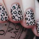 Matte, Nude, Glitter, and Leopard Print