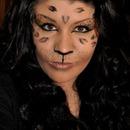 Full Face Cat Makeup