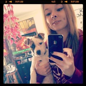 My pitbull puppy coco chanel