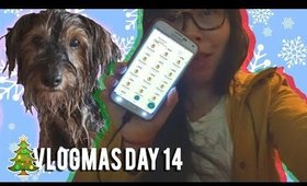VLOGMAS DAY 14: DOGGY BATH, CHARMANDER NEST | MakeupANNimal