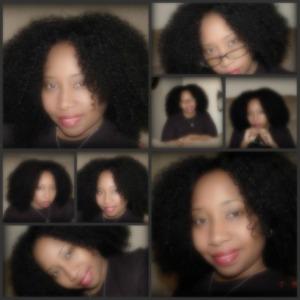 """Vanessa's """"La Jay"""" Half Wig Collage"""