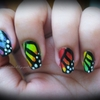 Rainbow Butterfly Wing