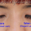 Mascara vs. False Lashes