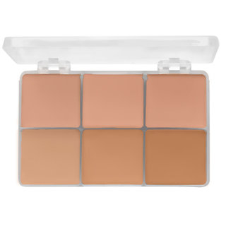 RCMA Makeup 6 Part Palette