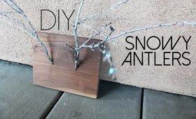 Day 7 of 12 Days of DIYs --- DIY Snowy Antlers (Fashionista Problems)