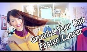 ➸K.L's Ultimate Guide to Longer/Healthier Hair