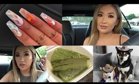 TRYING MORE OVER HYPED POPULAR YT FOODS + LIFE STUFF VLOG | hollyannaeree