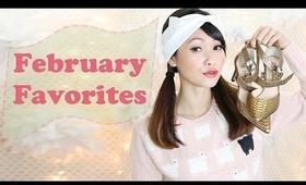❤ February Favorites