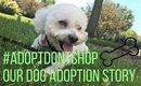 #AdoptDONTShop  ::Our Dog Adoption Story::