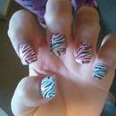 Pink & Blue Zebra