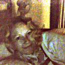 Statue Curl