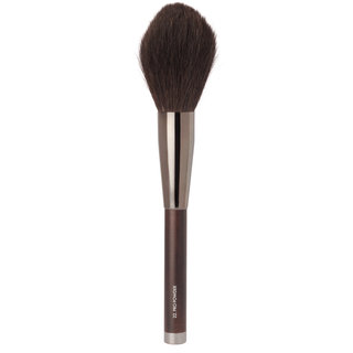 Brush 22: Pro Powder