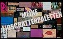 XXL Lidschatten Paletten Sammlung😍 Meine Tops und Flops!
