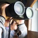 Private Detectives and Investigators in UK