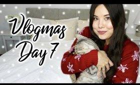 Cat DIYs: Platforms and Sissal Wall   Vlogmas KKN Style Day 7 ♡