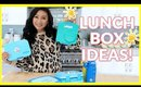 SCHOOL LUNCH BOX IDEAS FOR KIDS!