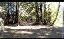 Woodside Picnic