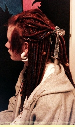 Dreads 1/2 up, 1/2 down from The side