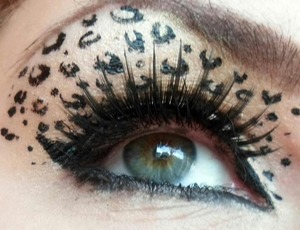Leopard eye