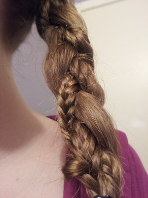This is a cool spin on a normal braid, all i did was took one of my sections then fishtail it then braided it in with the rest. Enjoy!