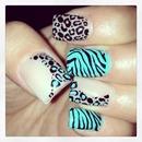 nails zebra